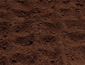 写真:07、土に埋める浄化